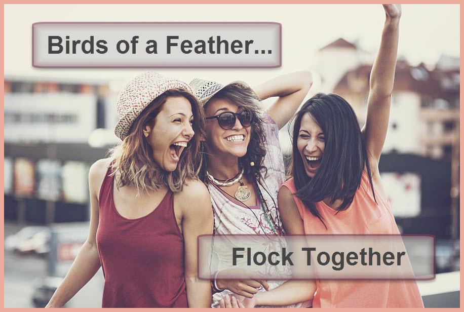 birds-of-a-feather-2-1.jpg